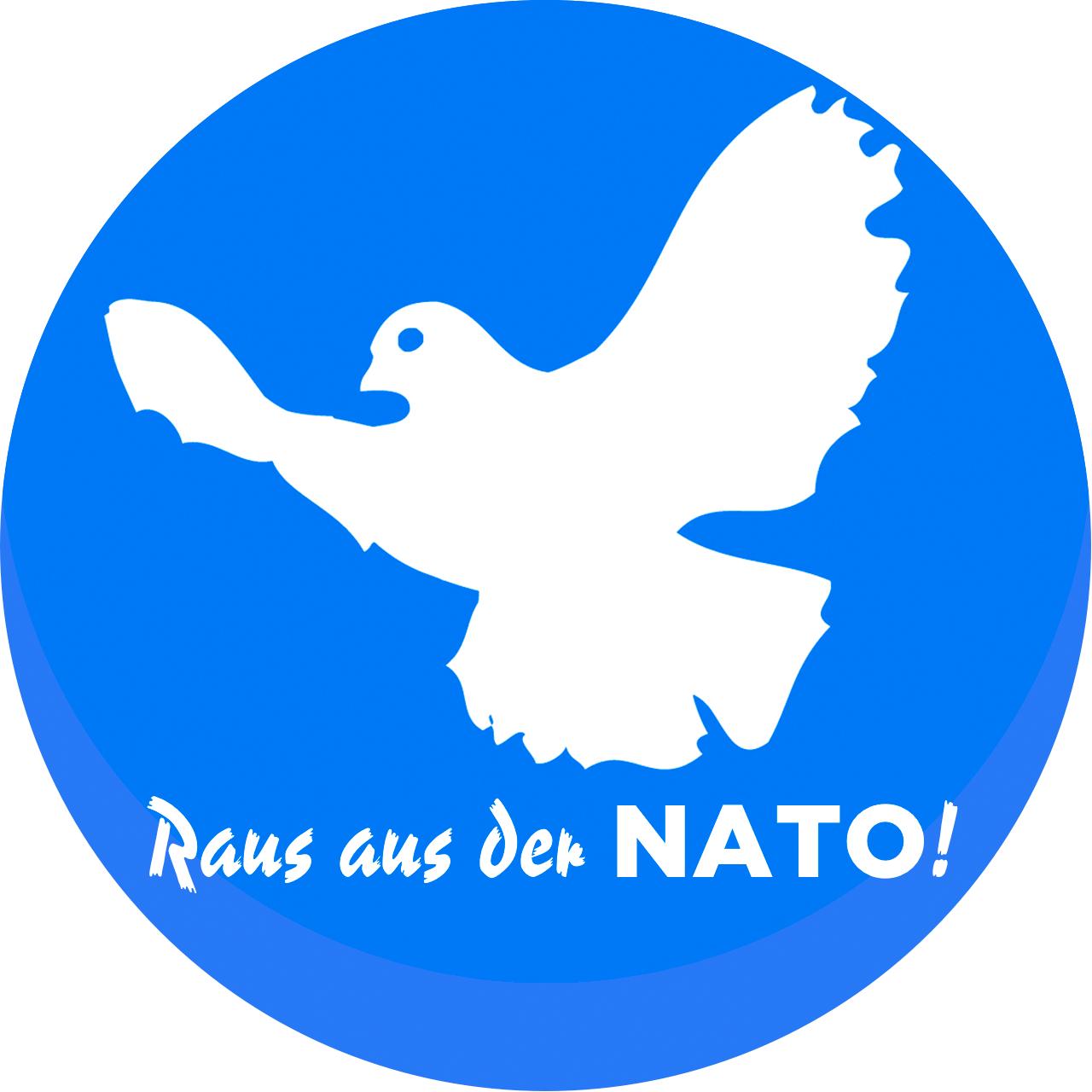 Friedentaube